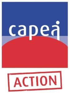 Capea dispositif d'accompagnement des artisans