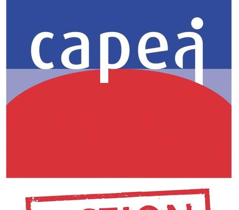 Dispositif CAPEA : Derniers groupes 2018