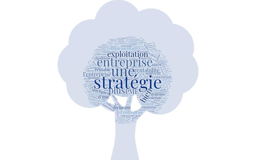 Stratégie et exploitation