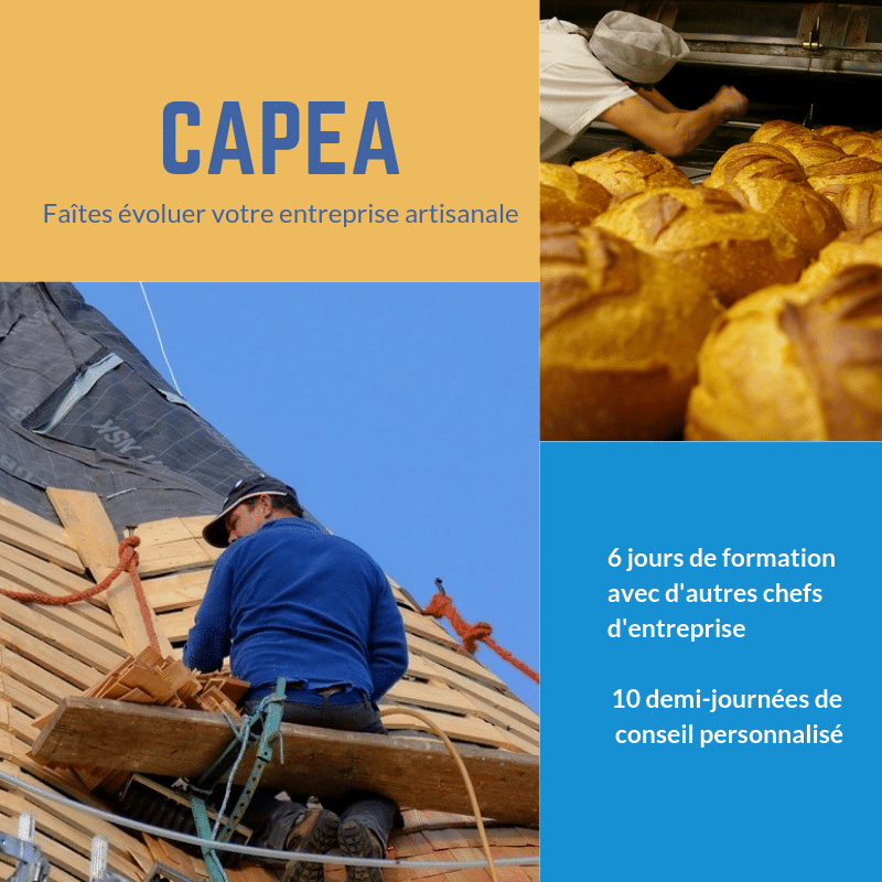 Dispositif CAPEA 2019
